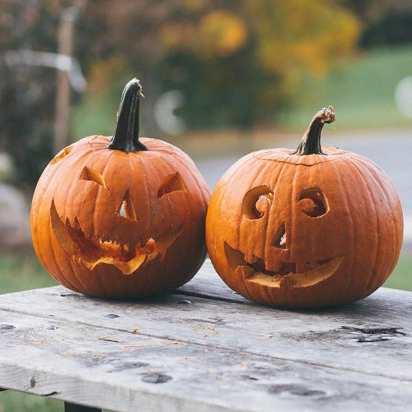 Von Kürbissen und Halloween!