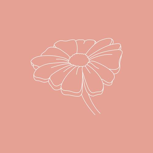 Geburtsblumen – April: Das Gänseblümchen