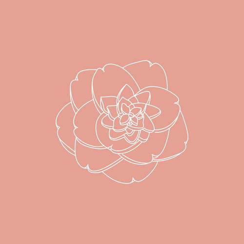 Geburtsblumen – November: Die Kamelie