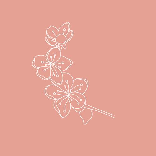 Geburtsblumen – März: Die Kirschblüte